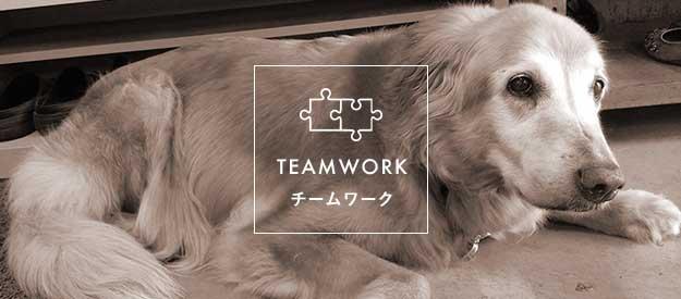 TEAMWORK チームワーク